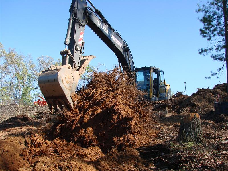 Stumps and organics are removed before grading begins